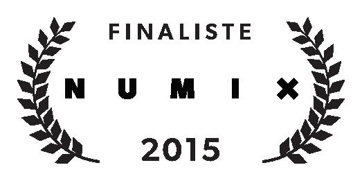 Finalist Numix 2015